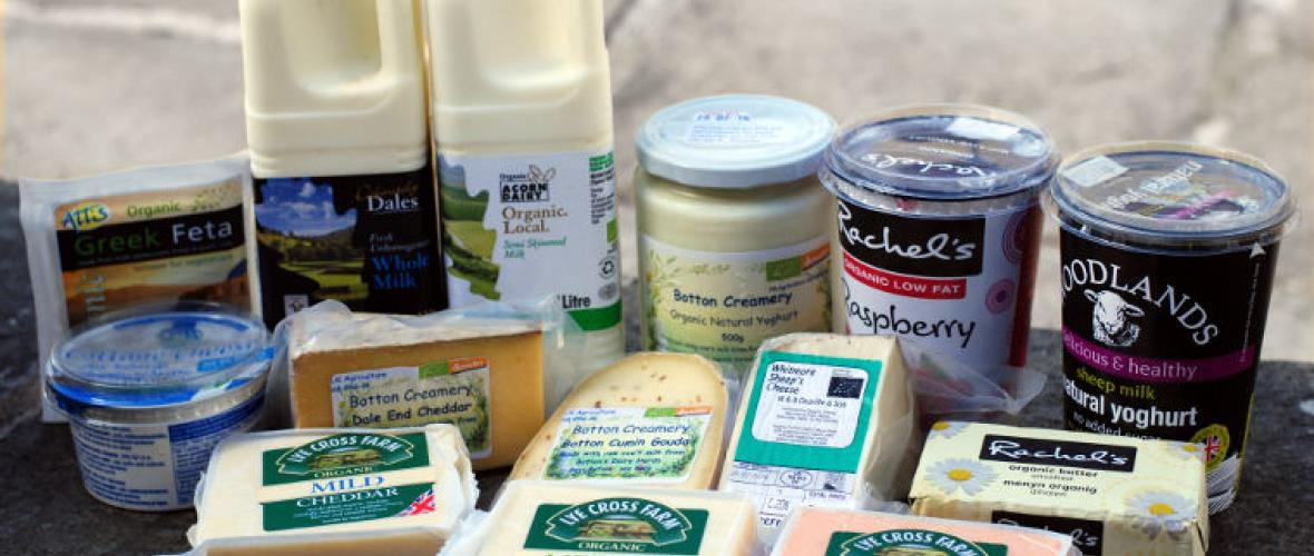 Dairy: cheeses, yoghurt, butter, milk & eggs